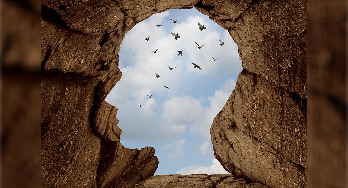 7 posibles significados de ver aves en tus sueños que lograrán sorprenderte. Foto: Shutterstock