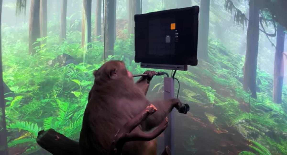 El proyecto busca que los dispositivos, sirvan para los humanos con condiciones especiales. Foto: Youtube