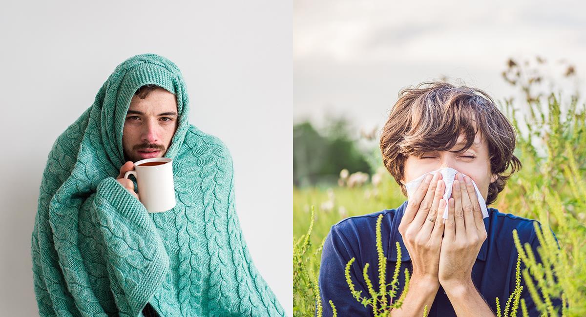 Gripa o alergia: conoce cuáles son las diferencias en sus síntomas. Foto: Shutterstock