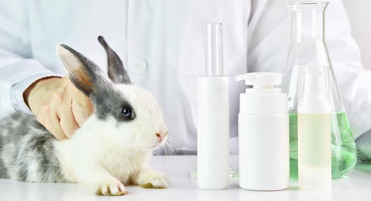 Empresas que siguen testeando sus productos en animales en el 2021. Foto: Shutterstock