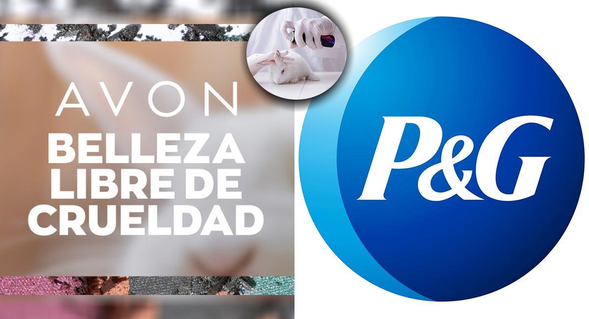 Compañías se defienden de acusaciones por testear en animales. Foto: Shutterstock - Facebook/ P&G Colombia - Twitter/@Avon_Colombia