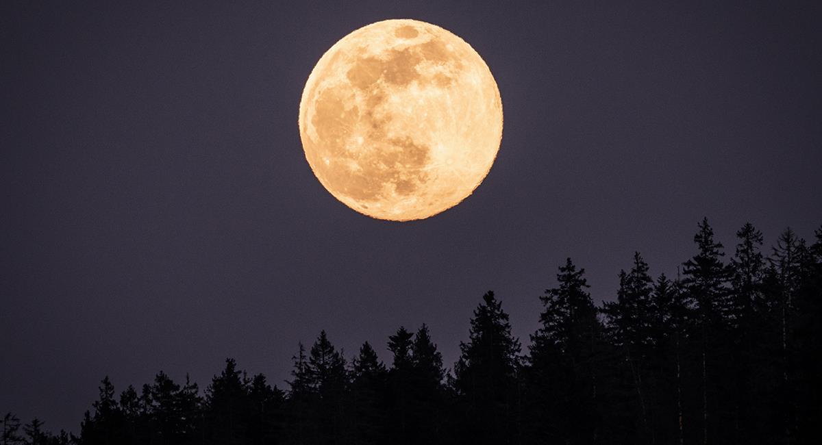 Descubre cómo podrían afectarte las 3 superlunas del 2021. Foto: Shutterstock