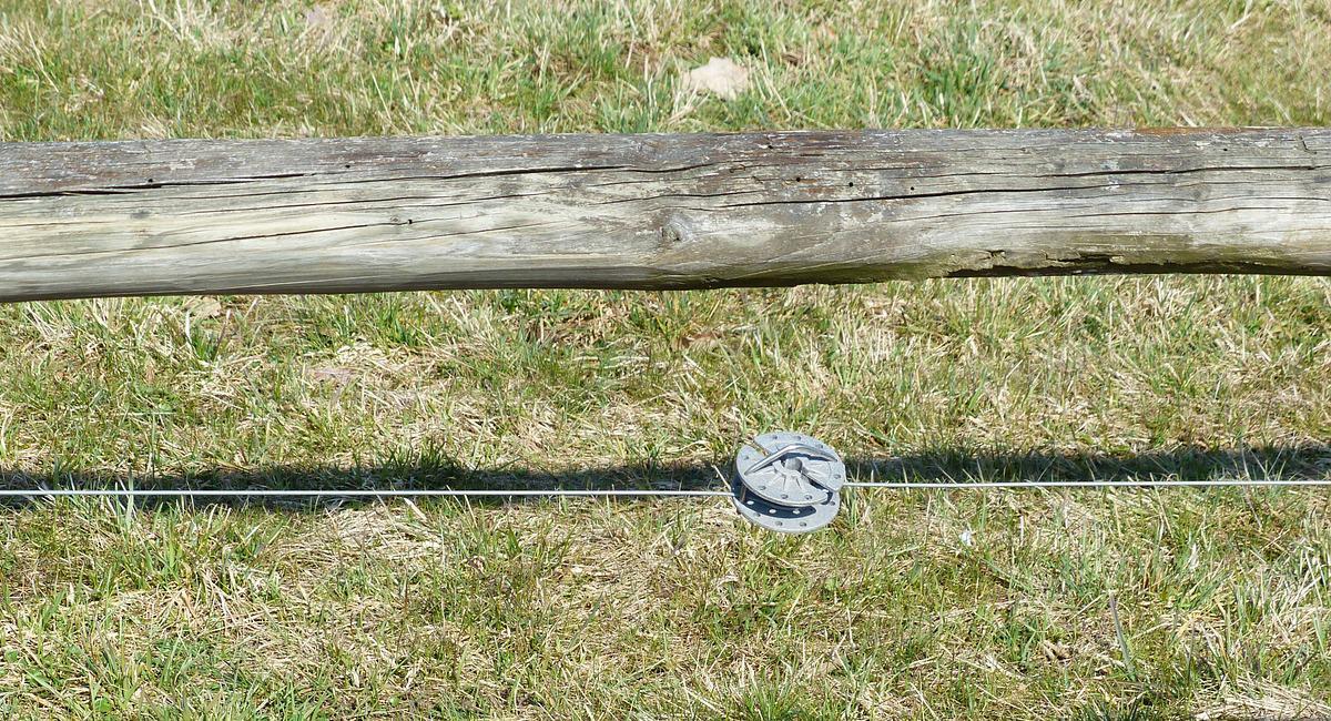Un hombre falleció en Argentina al hacer contacto con un cable de la cerca electrificada con la que cuidaba sus plantas de marihuana. Foto: Pixabay
