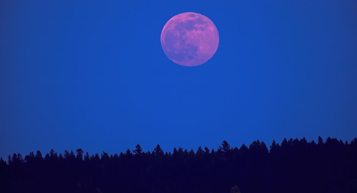 Superluna rosa del 2021: 2 rituales para el amor no correspondido y para el éxito. Foto: Shutterstock