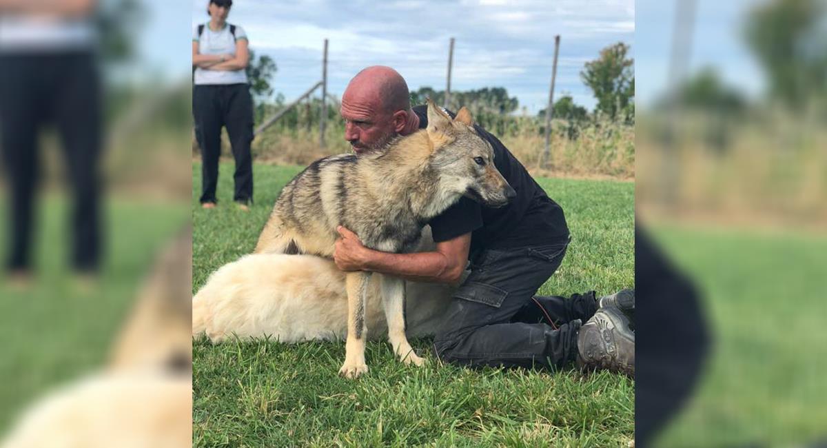 Reconocido adiestrador de animales patea a un perro y genera indignación. Foto: Twitter @claudiomangini