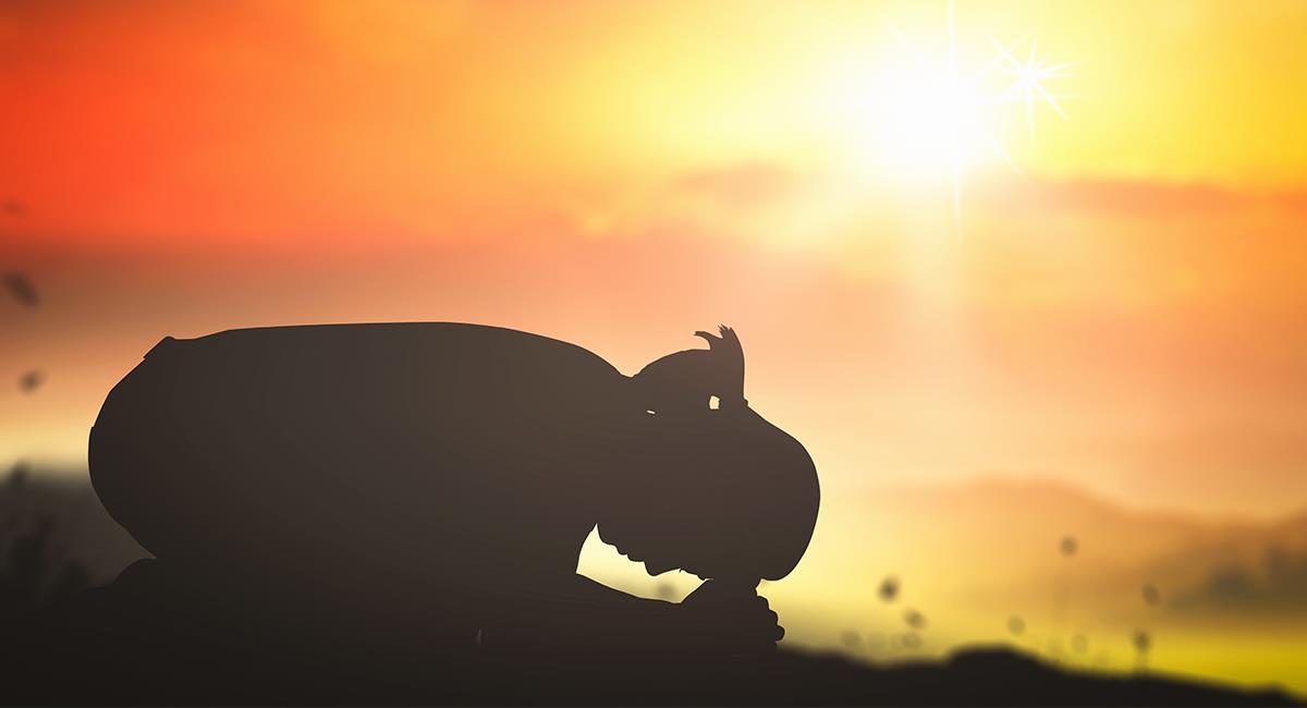 Oración para salir victorioso en situaciones difíciles y urgentes. Foto: Shutterstock