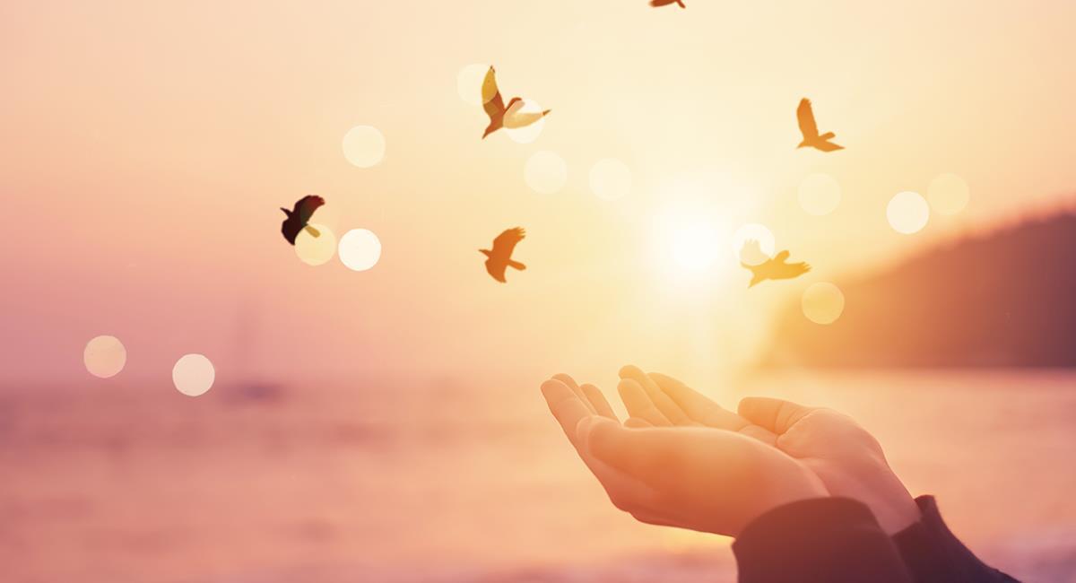 Poderosa oración para que llegue la paz y se acabe la violencia. Foto: Shutterstock