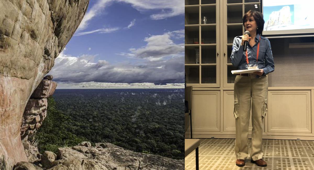 Julia Miranda Londoño ha trabajado arduamente para lograr que la Serranía de Chiribiquete sea declarado Patrimonio de la Humanidad. Foto: Twitter @fanzinerosa / @EsriCol