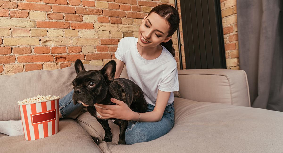Estas son las 5 cosas que los perros realmente odian de los seres humanos. Foto: Shutterstock
