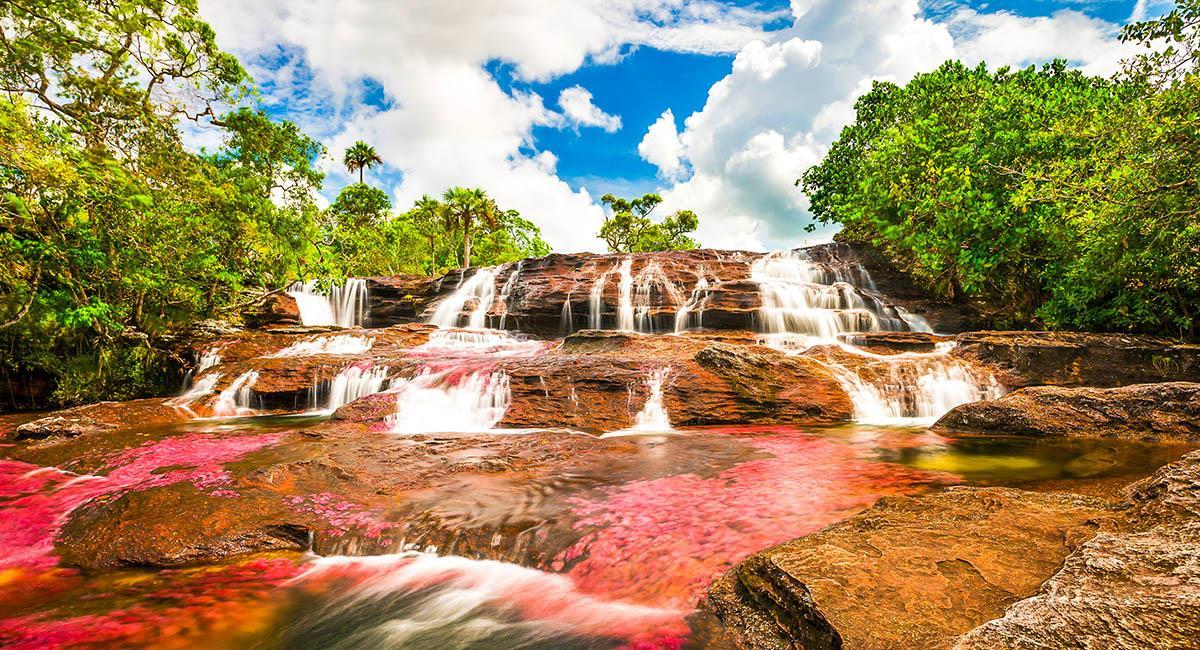 Los espacios naturales del Meta, son una verdadera belleza. Foto: Shutterstock