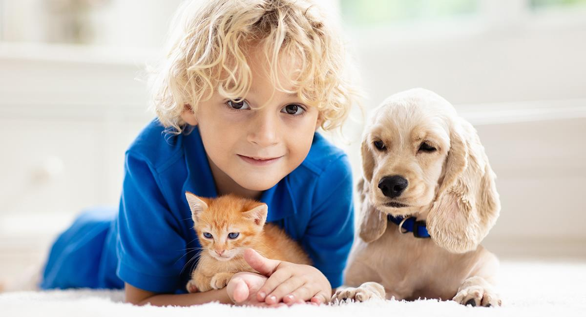 5 razones por las que todos los niños deberían tener una mascota. Foto: Shutterstock