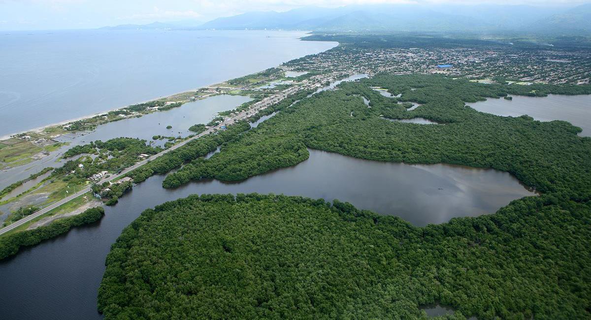 La Ciénaga Grande de Santa Marta es un ecosistema clave para el equilibrio medioambiental de la costa norte colombiana. Foto: Facebook Biocelestial