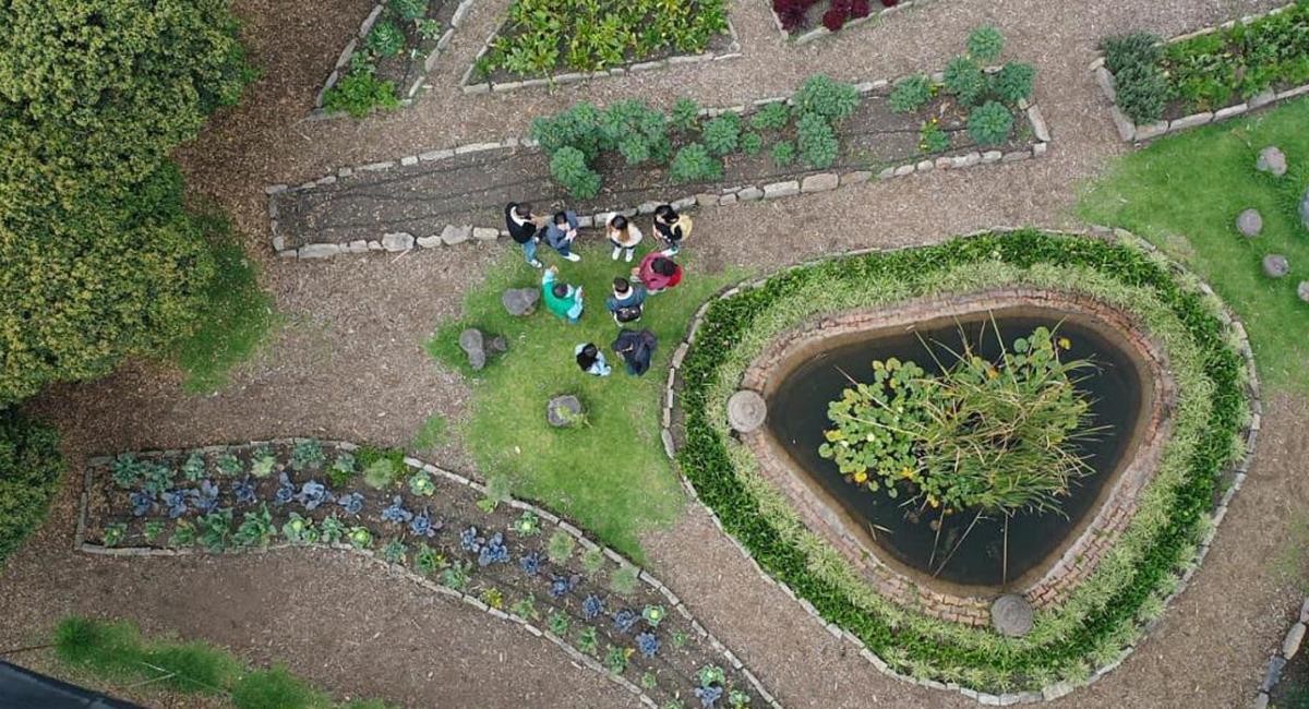 Para visitar el Jardín Botánico ya no tendrás que hacer una reserva en línea. Foto: Twitter @JBotanicoBogota ·