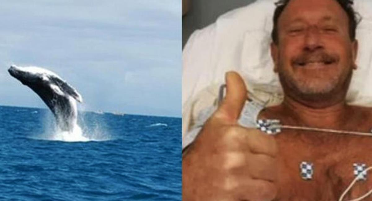 Una historia como para no creer, un buzo pescador fue tragado por una ballena y luego esta lo devolvió al agua sin sufrir mayores daños. Foto: Twitter @torreon