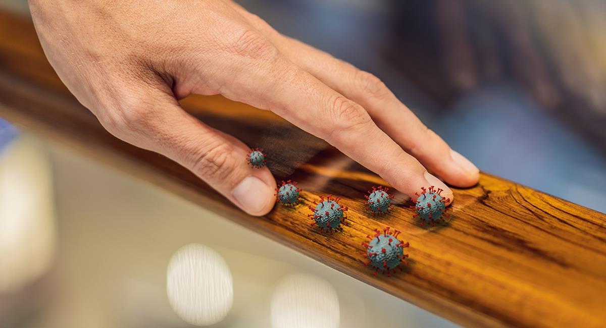 3 trucos para mantener el hogar libre de bacterias y virus. Foto: Shutterstock