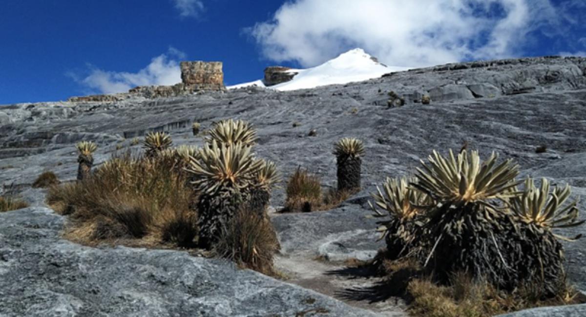 El Nevado El Cocuy es una 'perla' de la naturaleza, que puedes visitar. Foto: Twitter @ParquesColombia