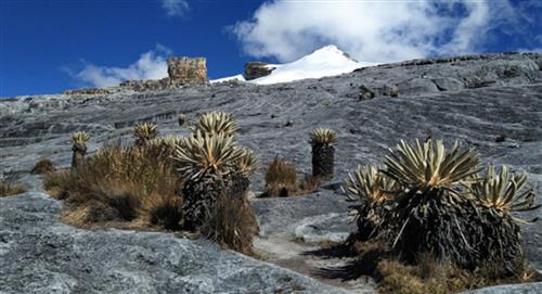 Nevados Colombia