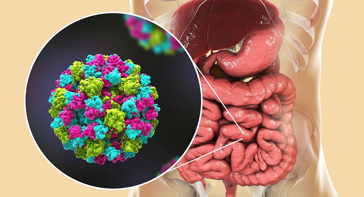 Nuevo virus altamente contagioso enciende las alarmas en el mundo entero. Foto: Shutterstock