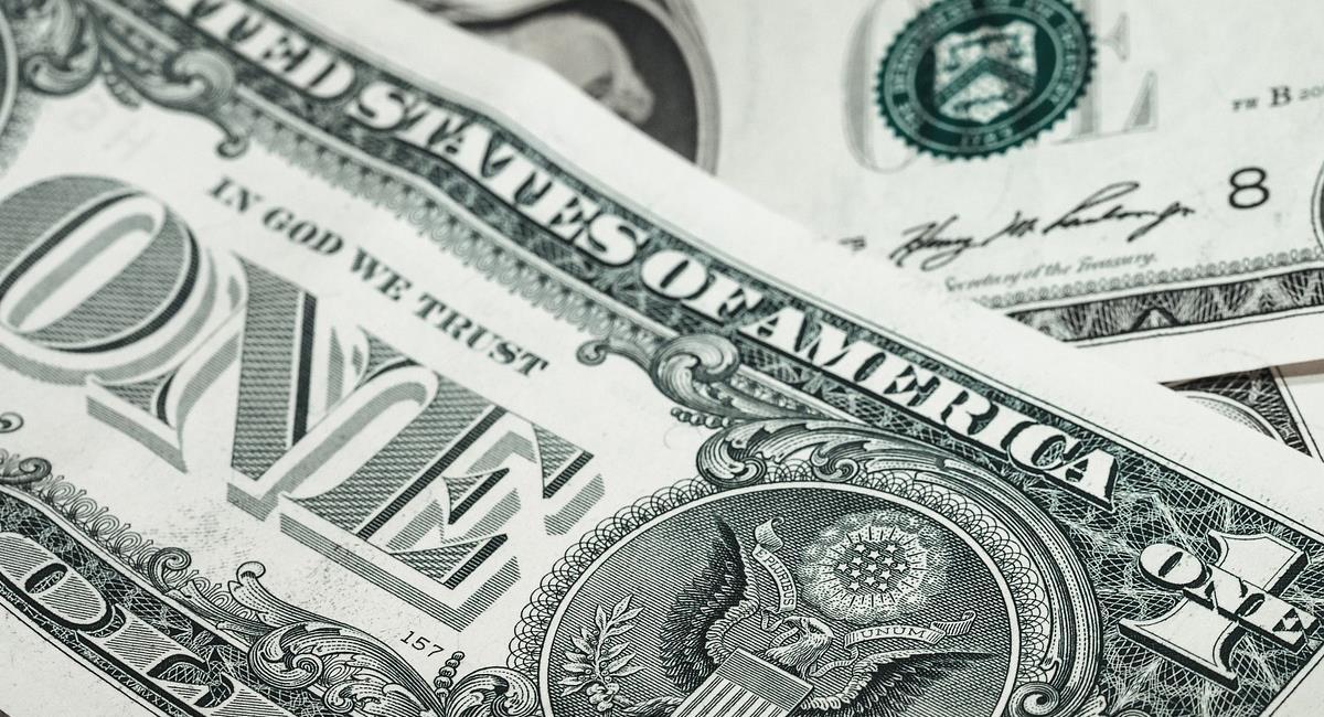 El precio del dólar depende de aspectos económicos y sociales determinando el rumbo de la economía nacional. Foto: Pixabay