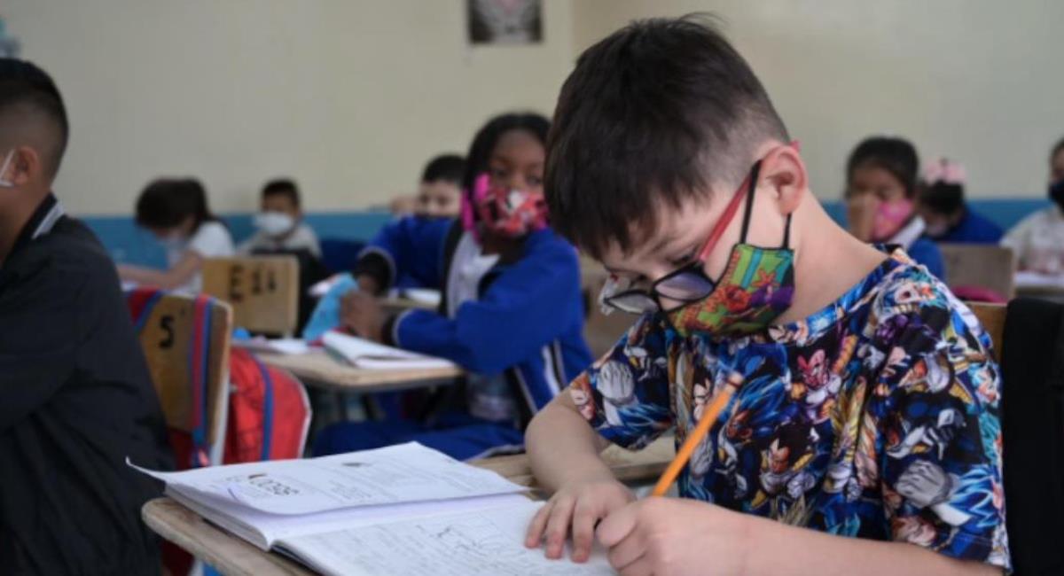 Descubren más de 190 colegios ilegales en Bogotá en un año. Foto: Alcaldía de Bogotá