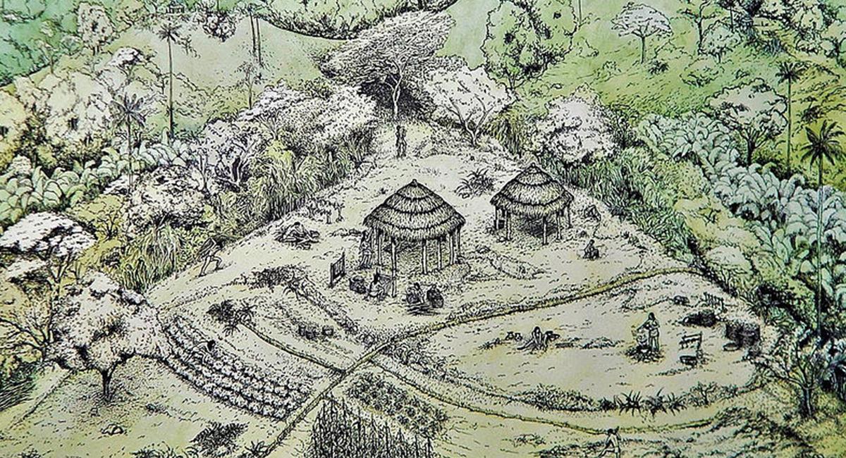 El nuevo hallazgo arqueológico fueron comprobados con pruebas de carbono 14. Foto: Prensa UNAL