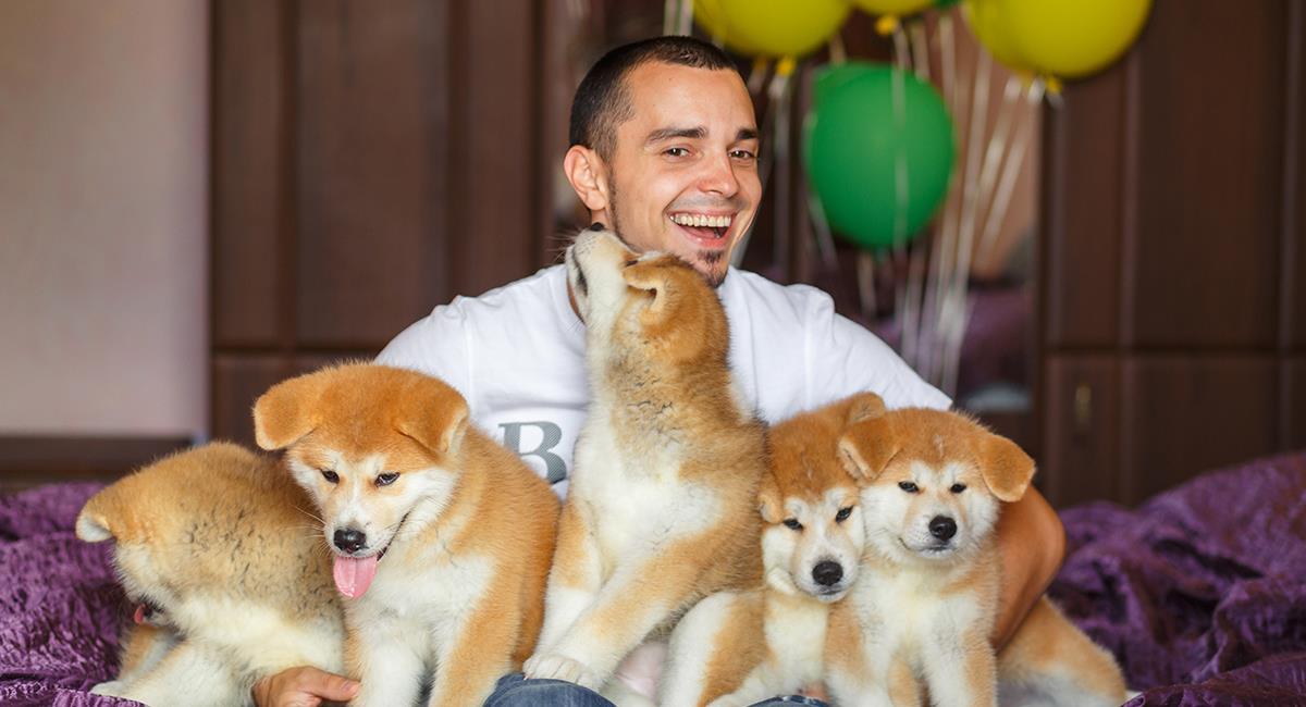 Haz este test para saber si amas a los animales o sufres del síndrome de Noé. Foto: Shutterstock