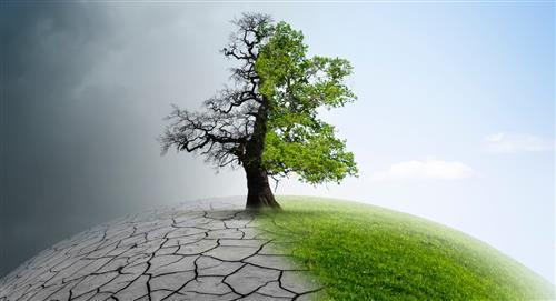 Preocupación por efectos irreversibles ya en el cambio climático
