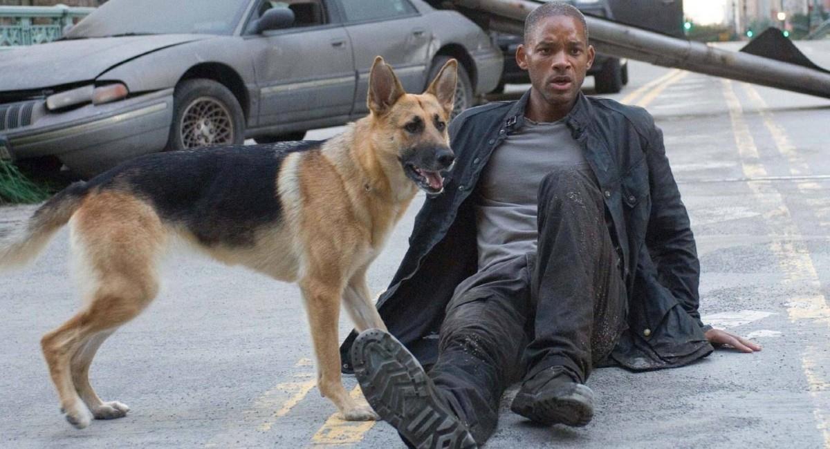 'Soy leyenda', protagonizada por Will Smith. Foto: Filmaffinity