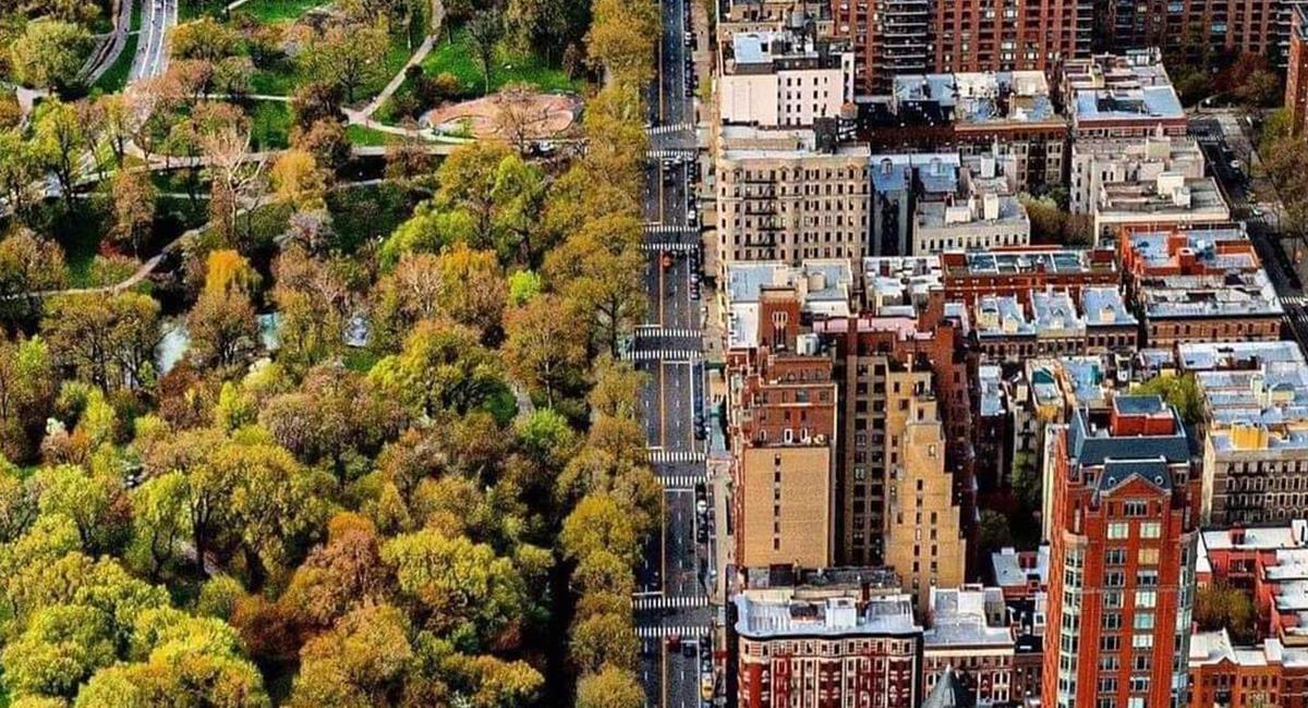 El Central Park es un parque considerado como un pulmón 'verde' en medio de Manhattan. Foto: Twitter @Maco_Rodas