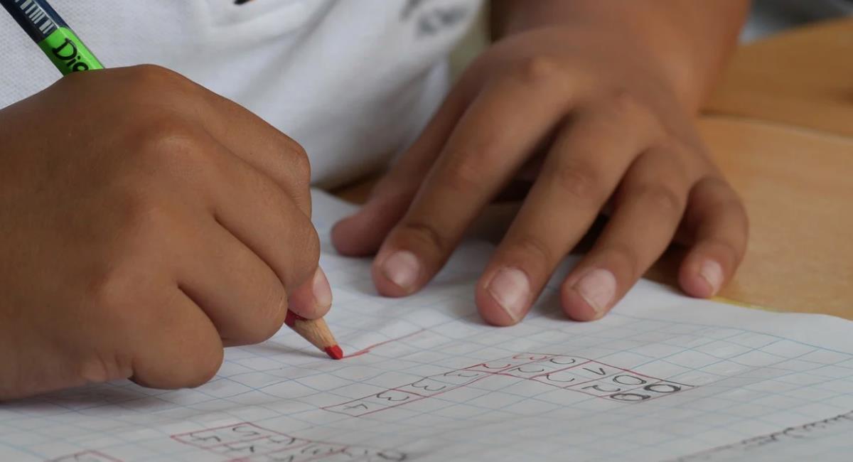 Importancia de la presencialidad en los colegios de Colombia. Foto: Pixabay