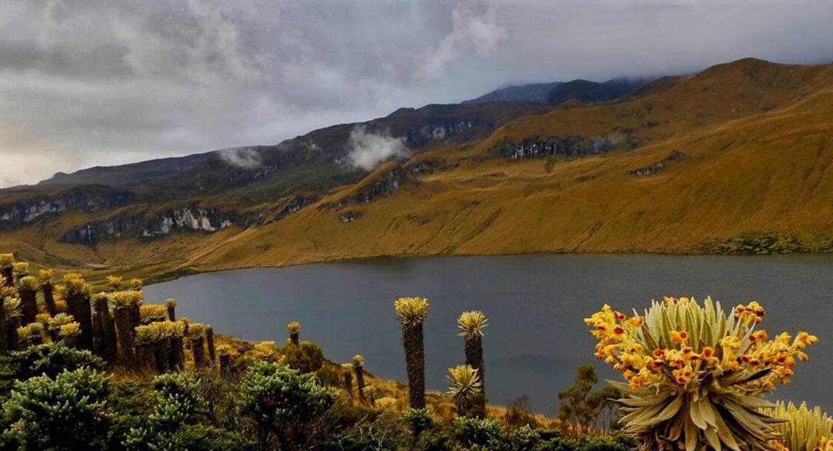 """""""La Perla del Otún"""" es el apodo de Pereira, por estar """"arropada"""" con este hermoso río. Foto: Twitter @Michael__Robayo"""