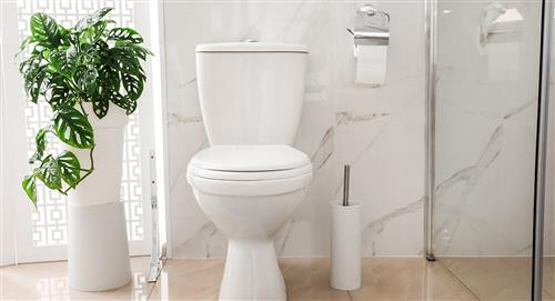 ¿Cómo eliminar los malos olores de tu baño?