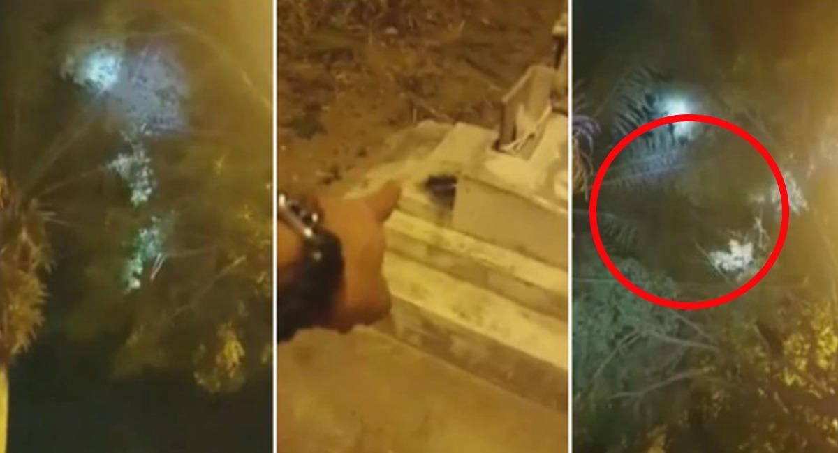 """Muchos 'curiosos' se acercaron al Cementerio Central de Ibagué para ver a la supuesta """"Bruja"""". Foto: Youtube"""