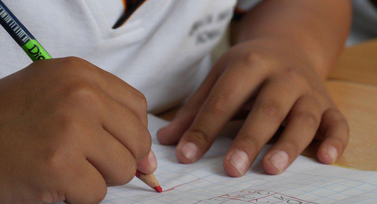 La discriminación hacia los venezolanos también se hace presente en los colegios del paós. Foto: Pixabay