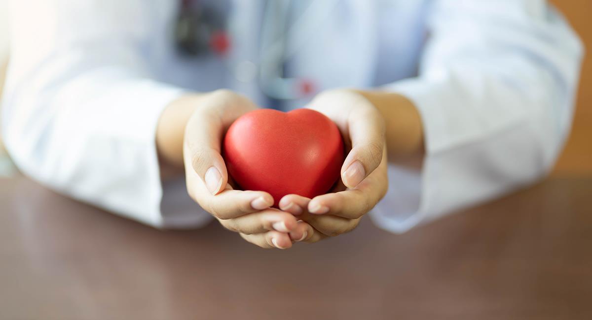 Experto comparte 5 cosas que debes hacer para tener un corazón sano. Foto: Shutterstock