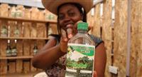 Viche, la extraña bebida afrocolombiana que 'saca mal de ojos' y espíritus