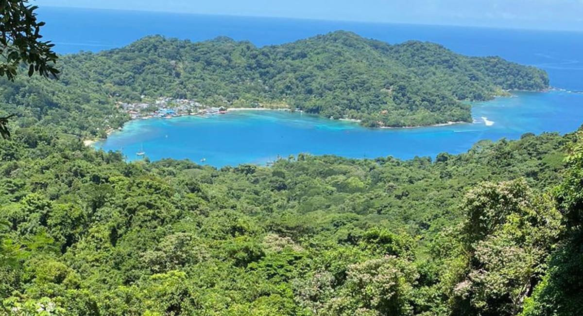 Las exuberantes selvas tropicales, rodeadas por playas son un paraíso terrenal. Foto: Twitter @MartinPipeNeira