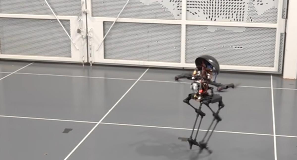 'Leonardo' aún es un prototipo bastante peculiar y funcional. Foto: Youtube
