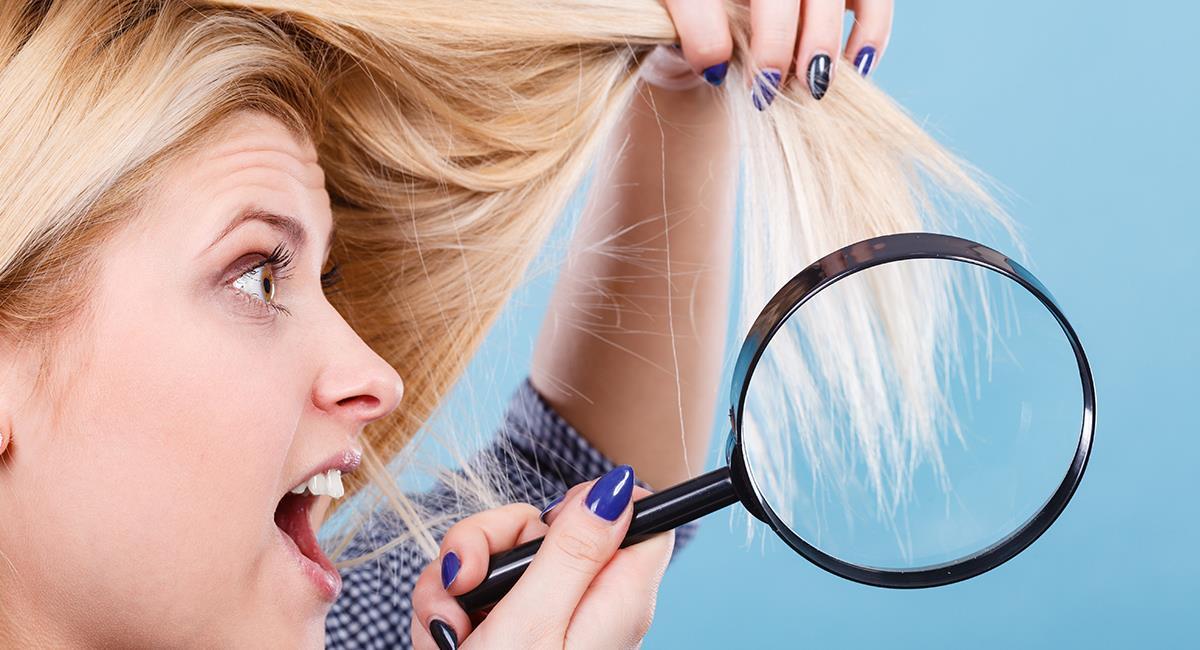 4 tratamientos naturales para recuperar el cabello tras una decoloración. Foto: Shutterstock